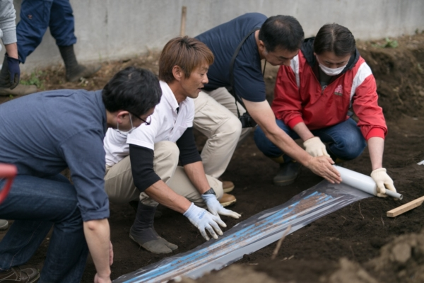 特殊な自然薯の栽培農法をみんなで力を合わせて行います